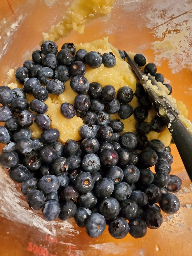 these are blueberries in batter for muffins