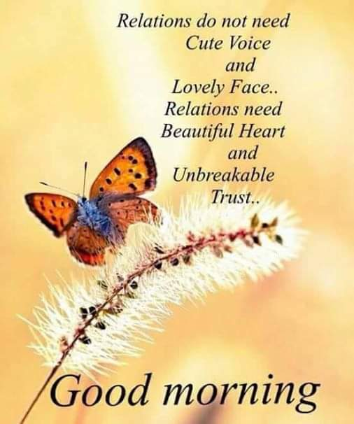 good-morning-wishes-greetings-video