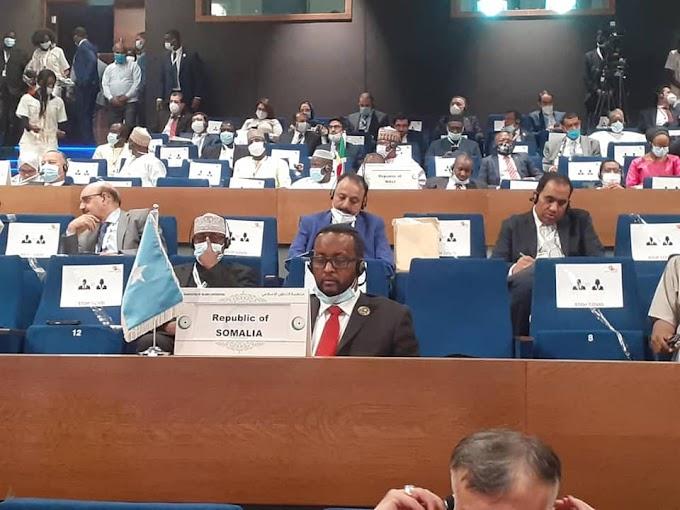 الصومال تشارك في الدورة 47 لمجلس وزراء خارجية منظمة التعاون الإسلامي في نيامي