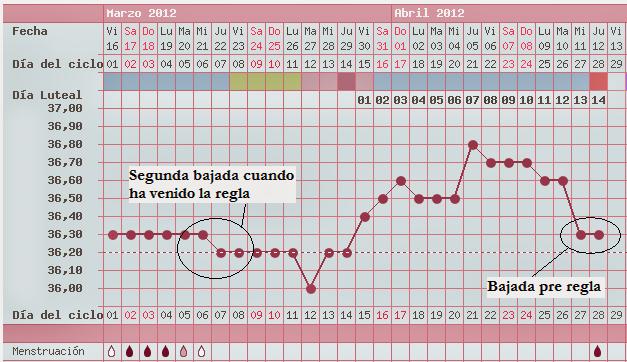 temperatura corporal despues de la ovulacion