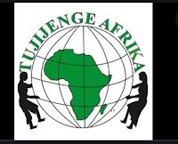 Tujijenge Africa ajiraportaltz