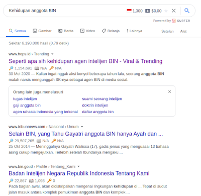 Uji Coba Seo Website keyword volume height