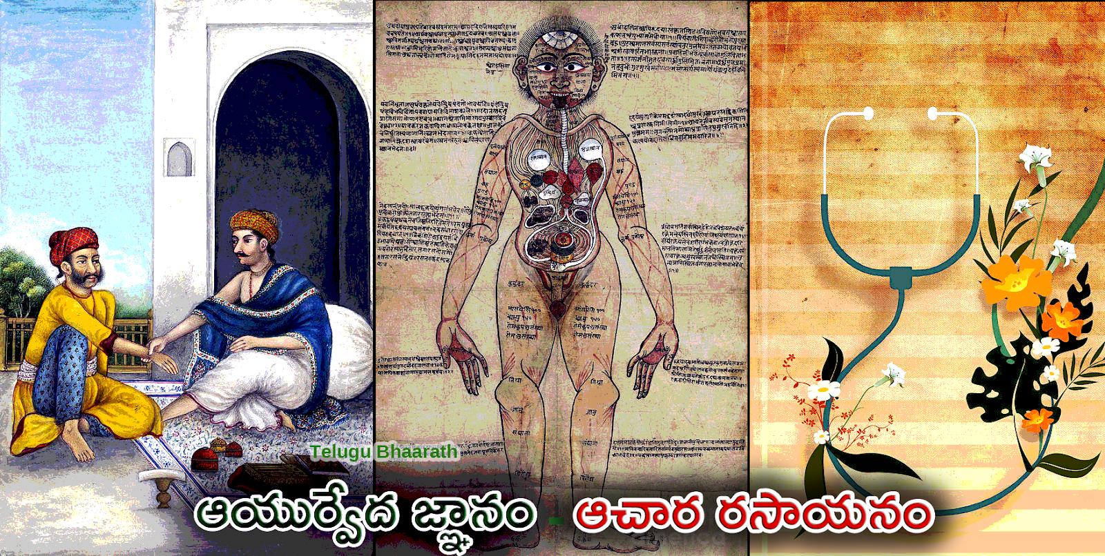 ఆయుర్వేద భారతీయ జీవన విధానమే సంక్రమణ వ్యాధులకు అడ్డుకట్ట - Bharatiya Jevana Vidhaname Sri Raama Raksha