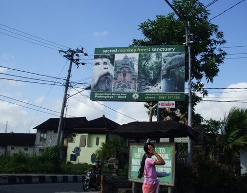 Ubud Monkey Forest Bali, Mandala Wisata Wenara Wana Ubud, Padangtegal Mandala Wisata Wanara Wana Sacred Monkey Forest Sanctuary