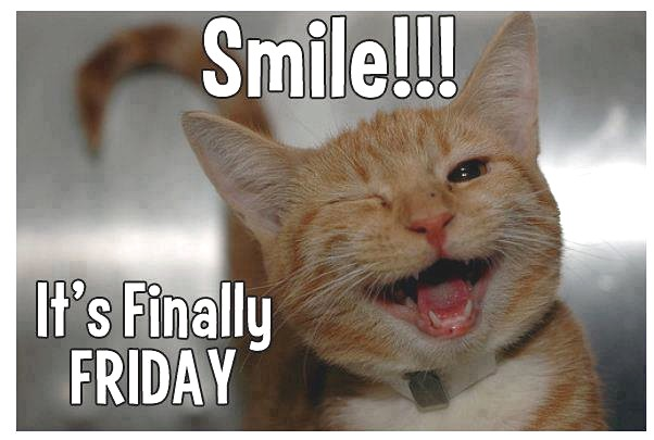 Good Friday jokes || Funny and latest jokes of Good Friday 2017