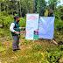 Agricultores de Loreto aplican las Buenas prácticas agrícolas en la producción de piña