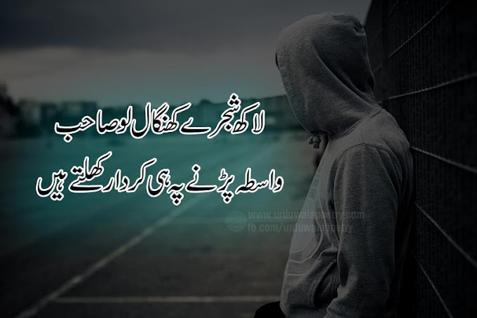 10 Best Kirdar Poetry Urdu- Character Poetry- Kirdar Shayari