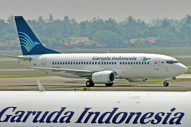 A Garuda airline plane taxis while another is parked at Jakarta's Soekarno Hatta International airport in 2007. AFP/Jewel Samad