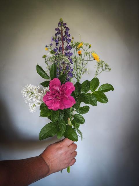 Seitsemän kukkaa tyynyn alle