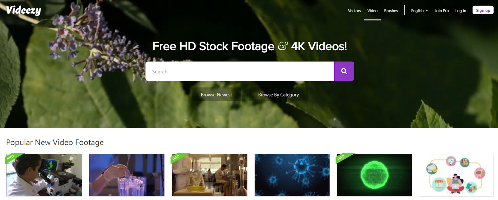 videezy is a website for stock footage