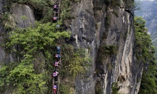 6-yr-old Had to Climb the Heavenly Ladder 'on a 1,400m High Cliff to go to School: A Scene That Will Leave You Breathless