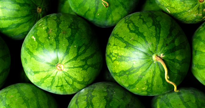 how to pick a sweet watermelon, how to tell if a watermelon is bad, watermelon picking guide, good watermelon vs bad, how to tell watermelon is ripe, tips to pick good watermelon in marathi, watermelon yellow spot, कलिंगड मराठी माहिती, गोड टरबूज असं ओळखा