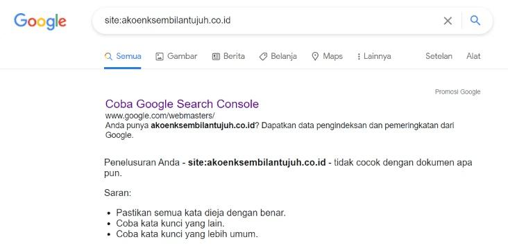 Artikel-Kamu-Sudah-Terindex-Google-atau-Belum?