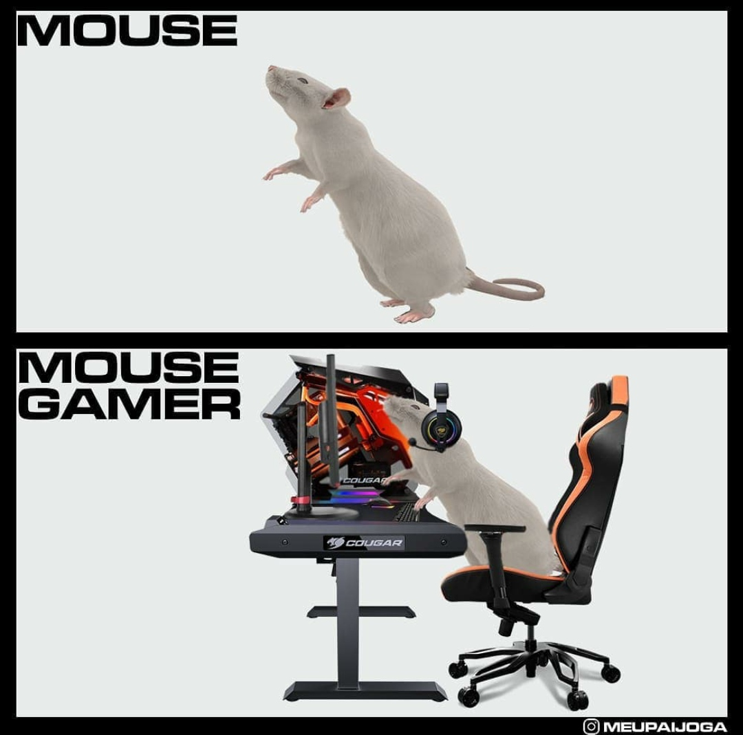 mouse normal e mouse gamer