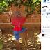 Palmas de Monte Alto: Mulher é presa após amarrar filho em árvore do quintal de casa