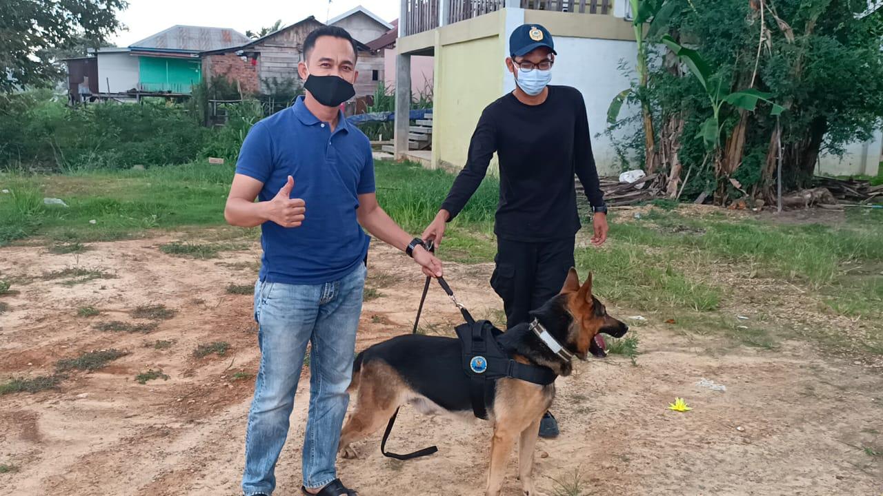 BNNP Provinsi Jambi Datangkan Empat Ekor Anjing Pelacak Dari BNN RI