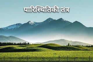 पारिस्थितिकी तंत्र - ecosystem in hindi