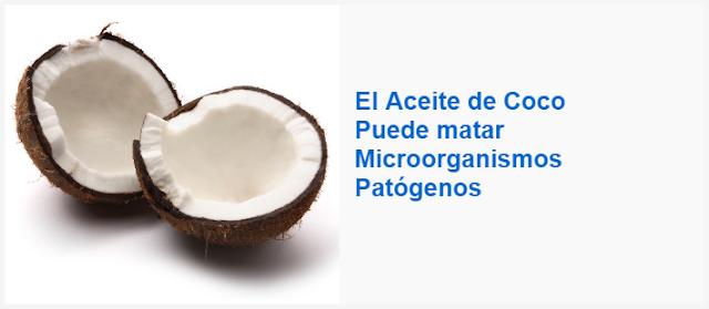 El Aceite de Coco Puede matar Microorganismos Patógenos