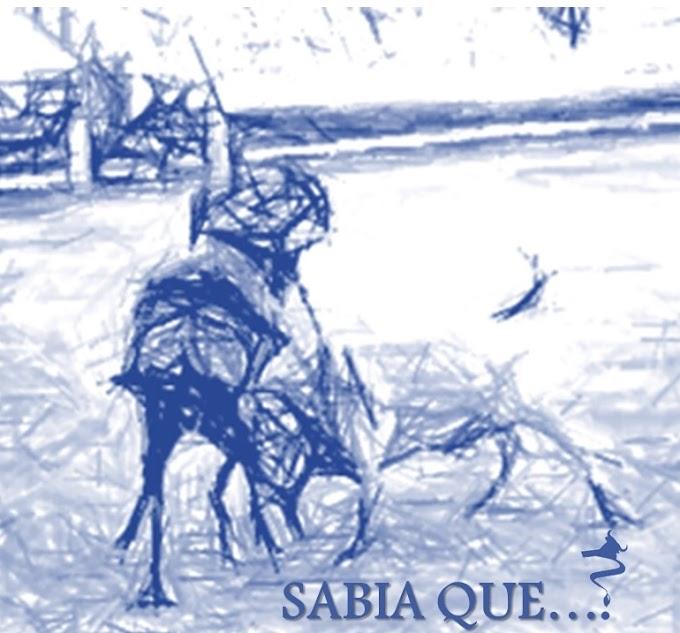 """""""Sabia que a 26 de Maio..."""" - Efemérides por Joaquim Tapada"""