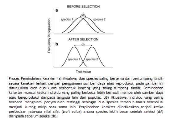 Proses Pembentukan Relung (Niche)