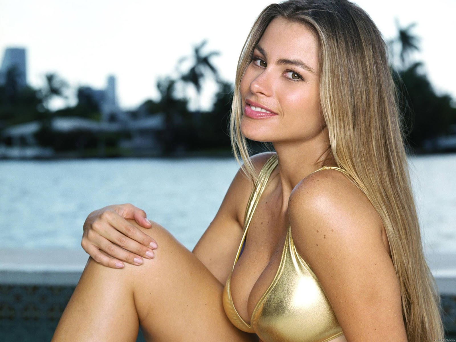 Anal Fayna Vergara vergara anal   www.freee-porns