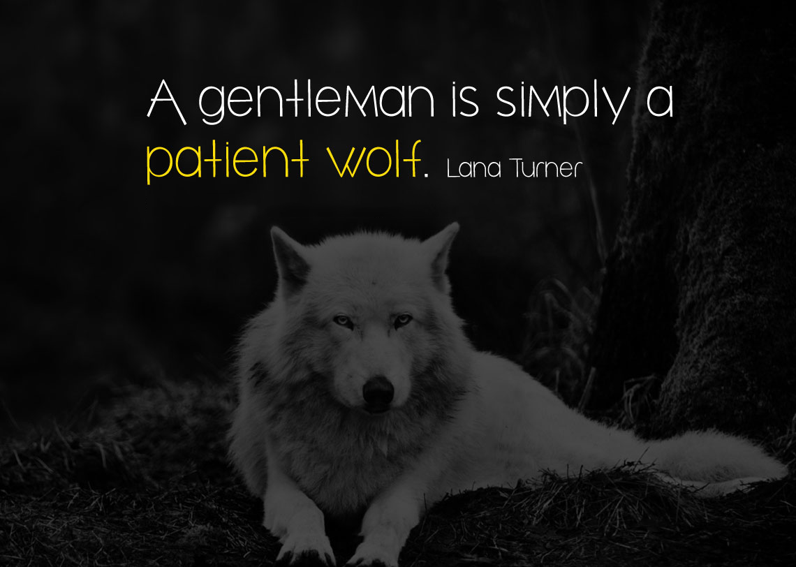 A gentleman is simply a patient wolf. Lana Turner