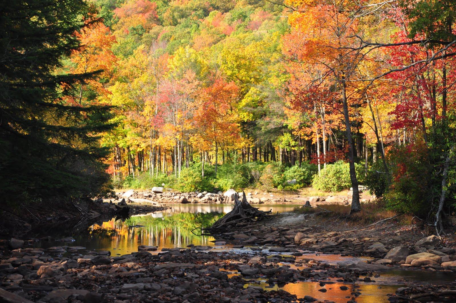 Falling For Fall Deep Creek Lake Taylor Made Deep