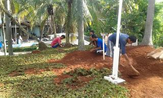 Jasa Pembuatan Taman di Bogor