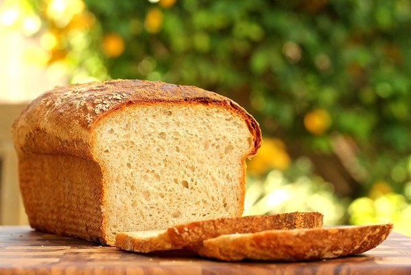 No Knead Light Wheat bran-encrusted Sandwich Bread sliced