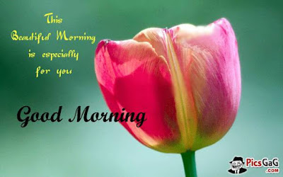 Inspirational Good Morning: this beautiful morning is especial for you