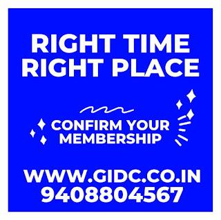 Visnagar GIDC Company List