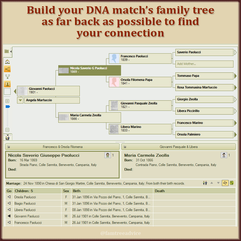 If that DNA match is distant, you're gonna need a bigger tree.