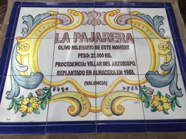 Placa conmemorativa de la procedencia del olivo milenario