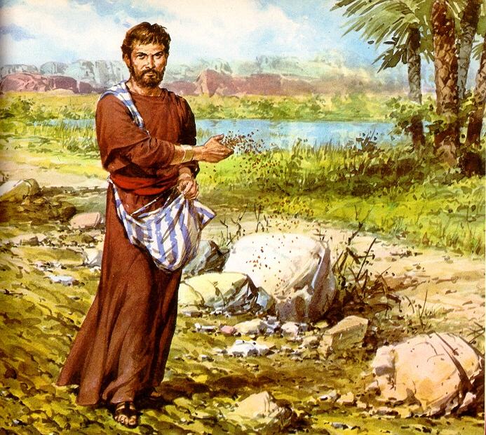 Resultado de imagen de sembrador evangelio