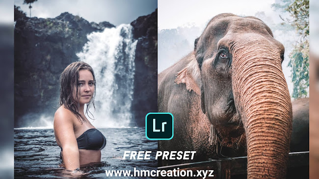 Download-free-lightroom-mobile-presets-White-and-cold-Lightroom-presets