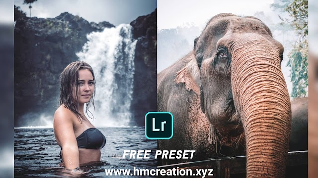 Download free lightroom mobile presets White and cold | Lightroom presets