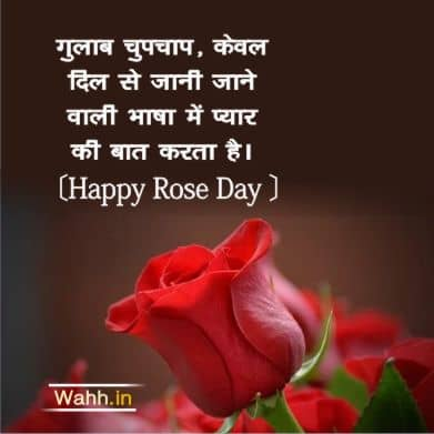 Rose Day Quotes for Wife In Hindi