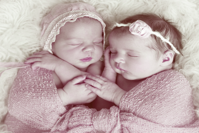 Due to the birth of twins in humans