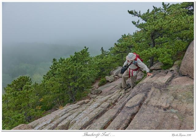 Beachcroft Trail: ...