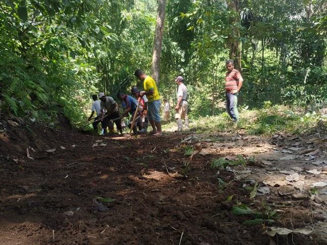 Masyarakat Ndori  Desa Golulada Gotong Royong kerja jalan ke Kebun