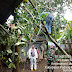 Rumah Warga Tertimpa Pohon, Babinsa Dan Bhabinkamtibmas Bantu Evakuasi.