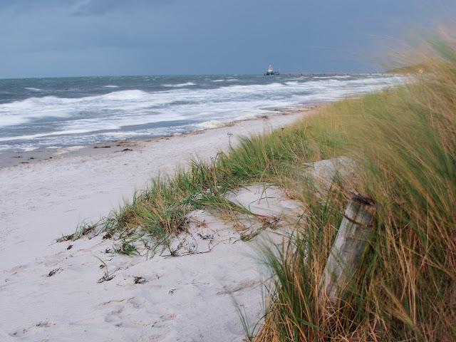 Am Strand beim Freesenbruch. Im Hintergrund die Zingster Seebrücke mit der Tauchglocke