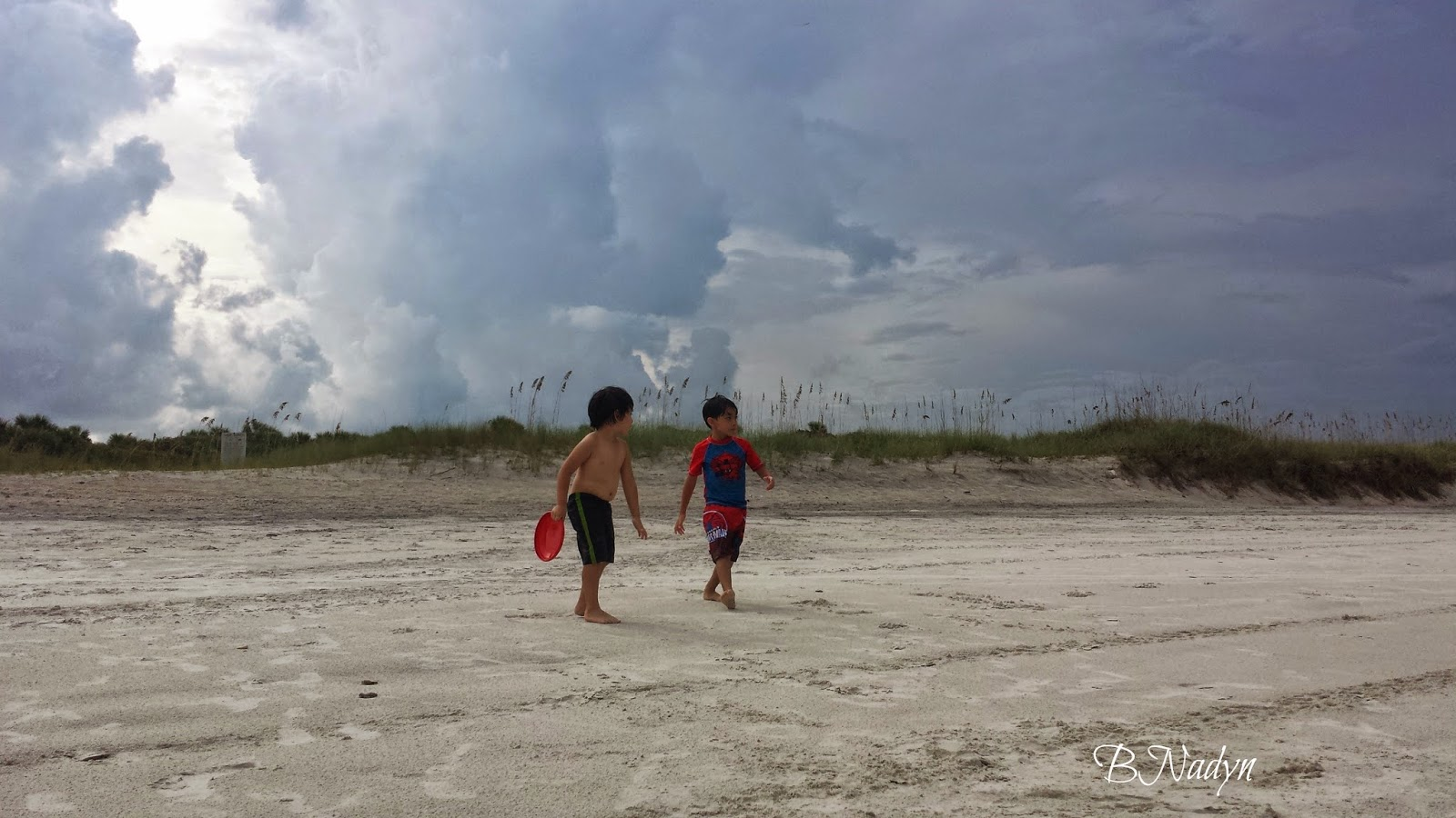 summer, wordless wednesday, jacksonville