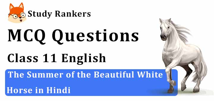 Ch 1 The Summer of the Beautiful White Horse Hindi Summary Class 11 Snapshots