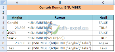 rumus ISNUMBER dalam Excel