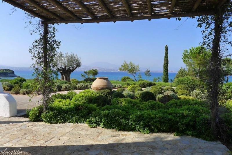 Cipreses mediterráneos en Grecia