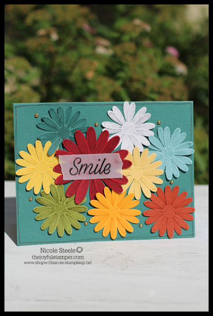 My card is covered with 9 colors of stamped and punched daisies from Stampin' Up!'s Daisy Lane Bundle