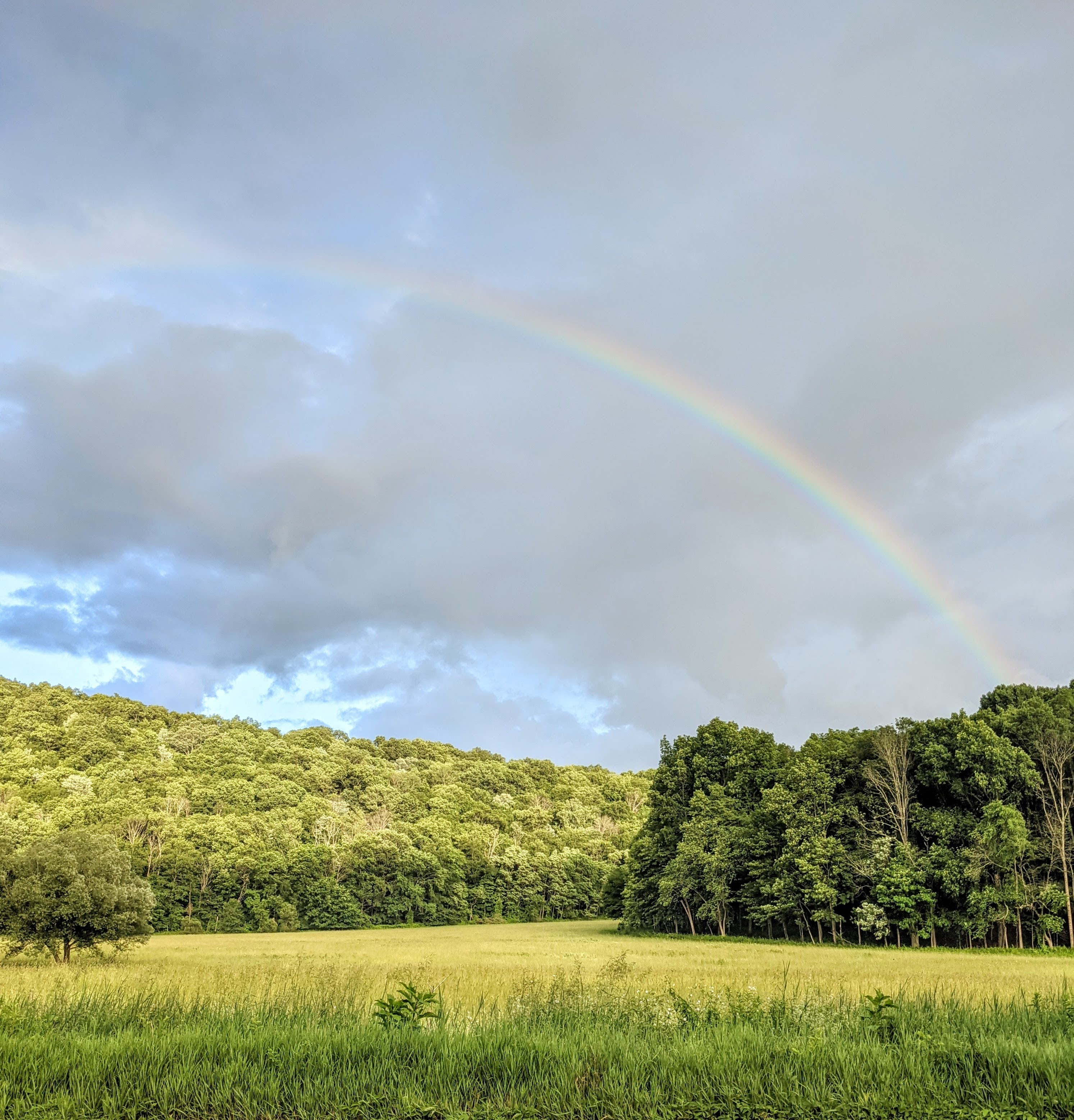 Rainbow over a Field in Kent, Connecticut | Taste As You Go