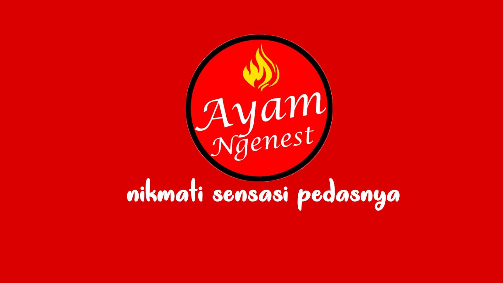Ayam Ngenest Ayam Geprek Rekomendasi Buat Kamu Yang Di Bandung