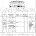Jobs in Population Welfare Department Govt of Punjab 2020